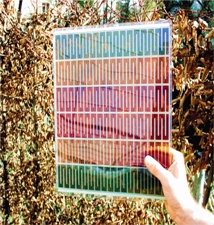 solar-window.jpg