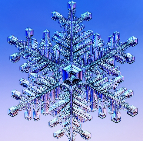 snowflake-AmSciCover.jpg