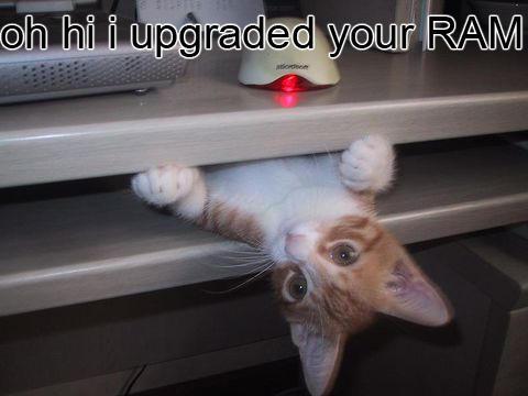 hi_upgradeRAM.jpg